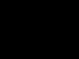 black trombone